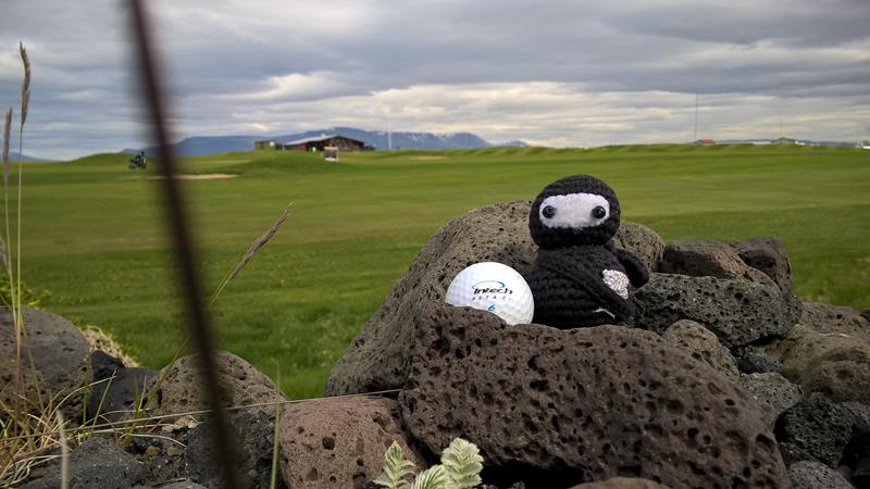 Beim Golfplatz haben wir einen Ball gefunden