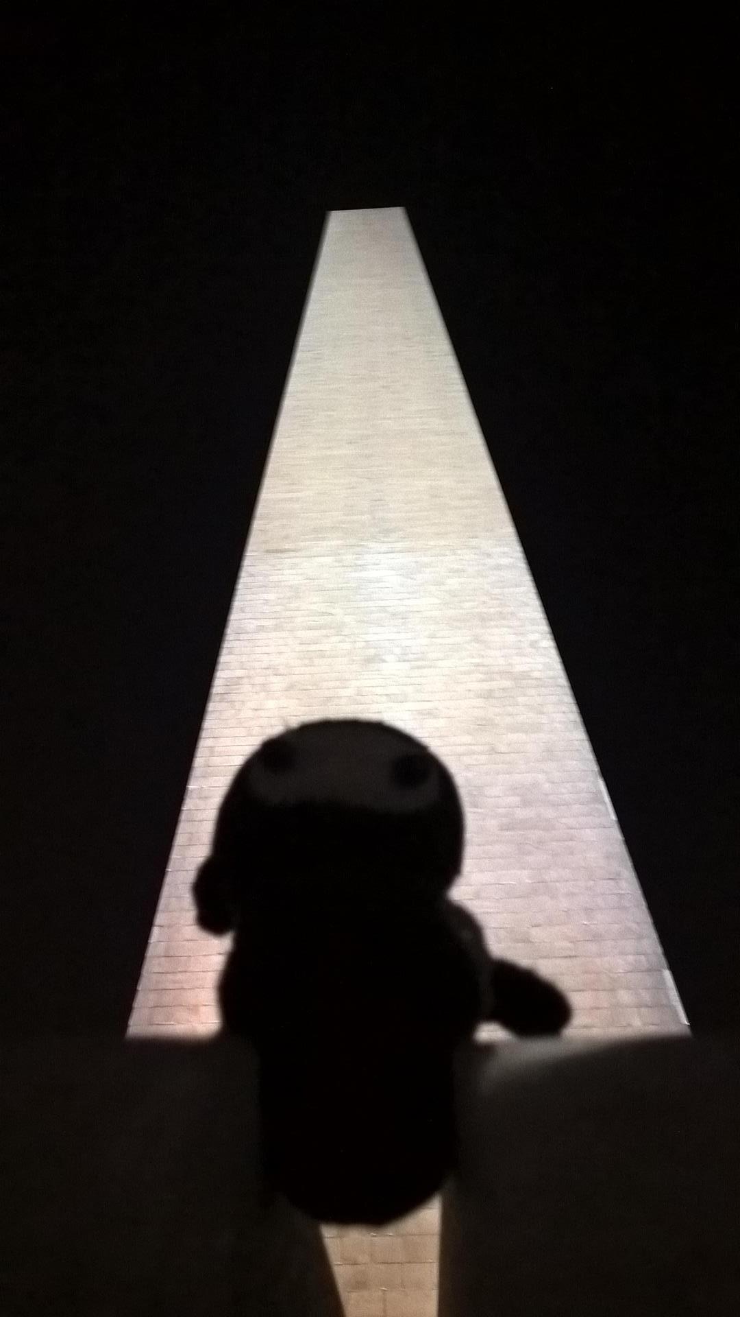 Schattenkrieger: Neumel versteckt sich vor dem Washington Memorial