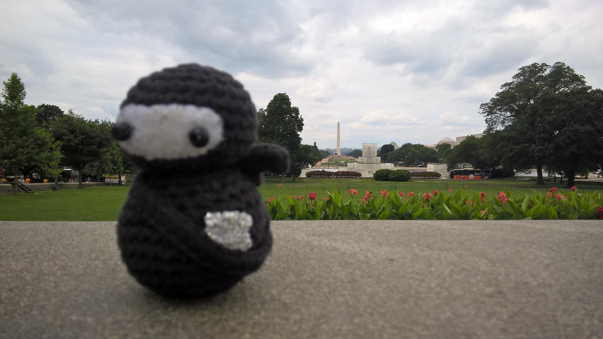 Im Hintergrund das Washington Memorial mal bei Tageslicht