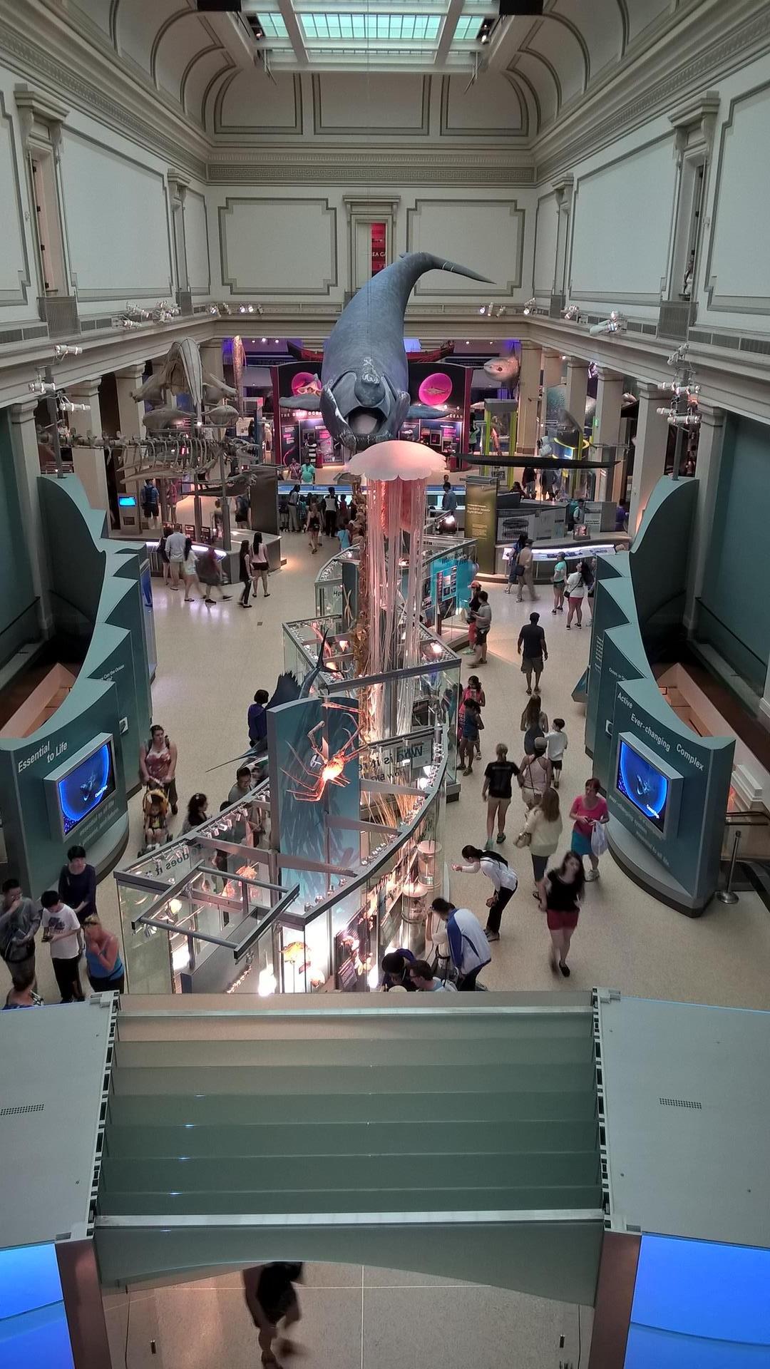Smithsonian Naturkundemuseum