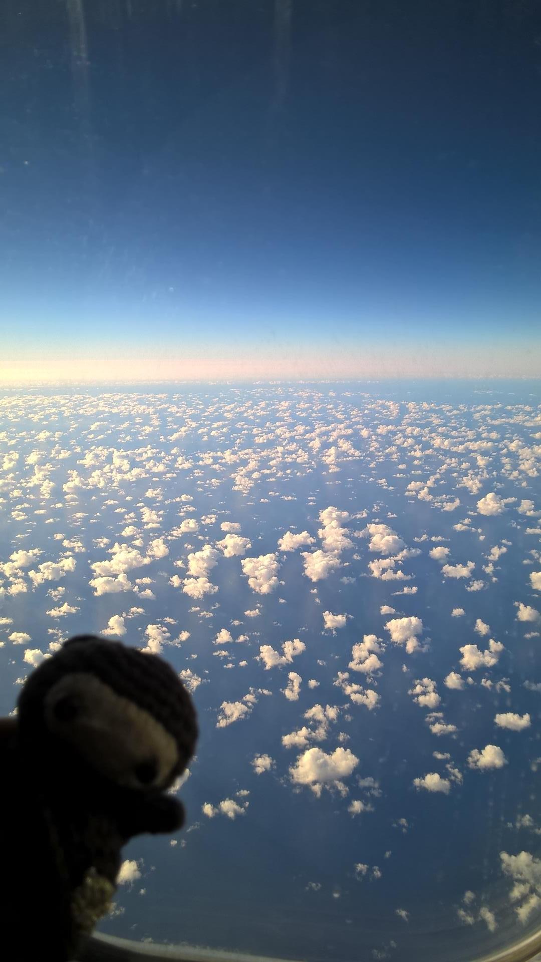 Neumel hoch oben über dem Pazifik