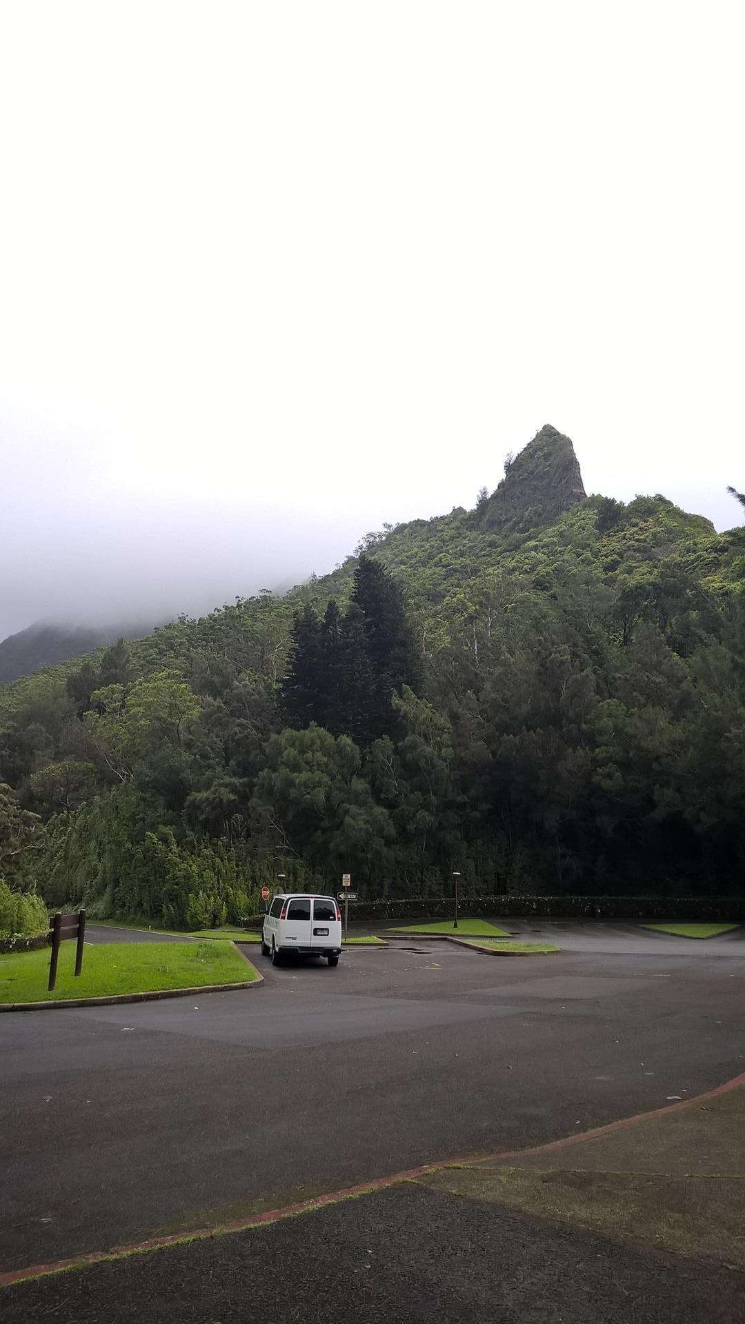 Die Berge sind in den Wolken versteckt: Man erkennt schon wie grün hier alles ist