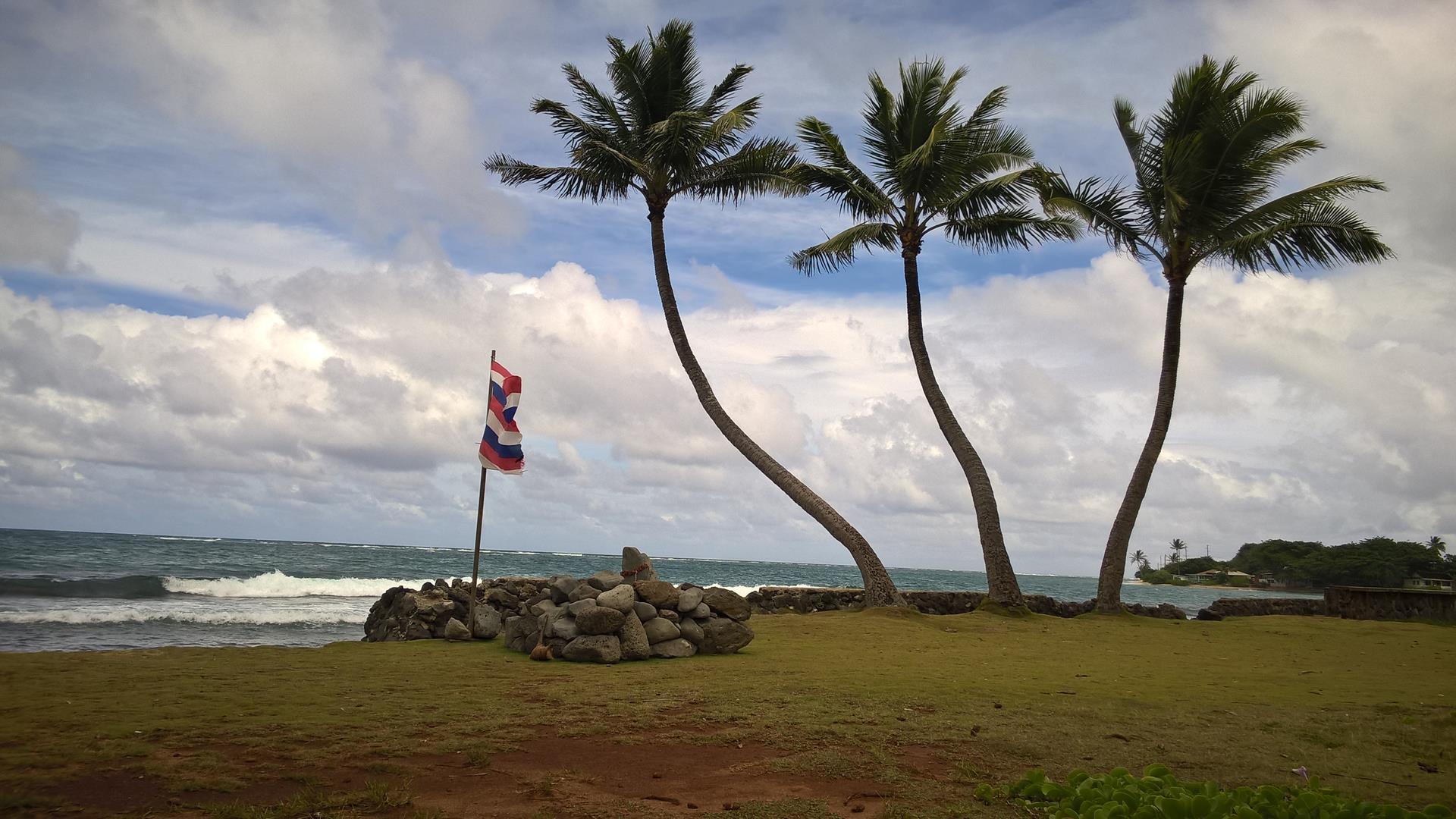 Eine Hawaii Flagge vor drei Palmen am Meer: Könnte kaum besser sein!