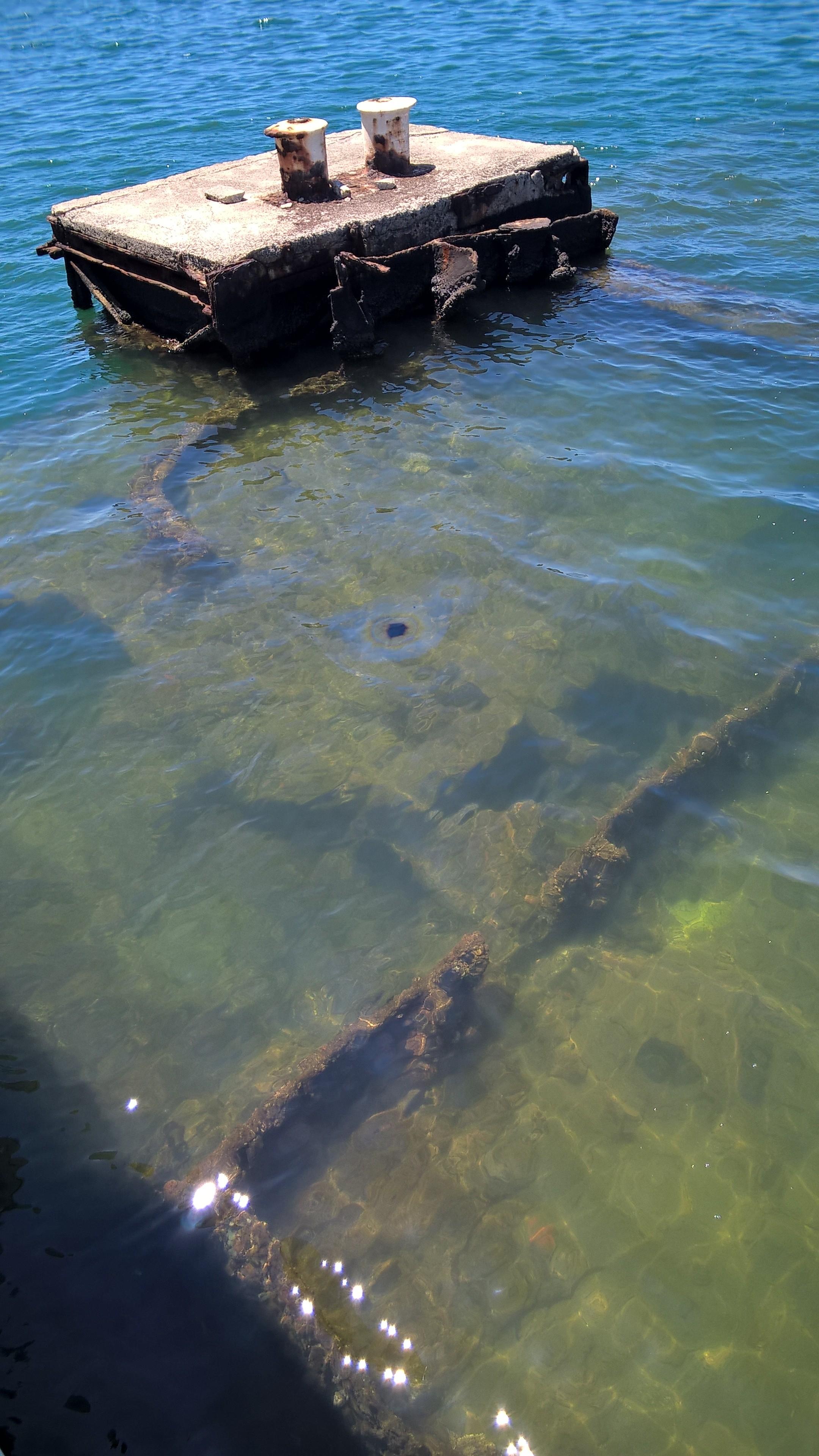 ... ein paar Meter unter der Wasseroberfläche