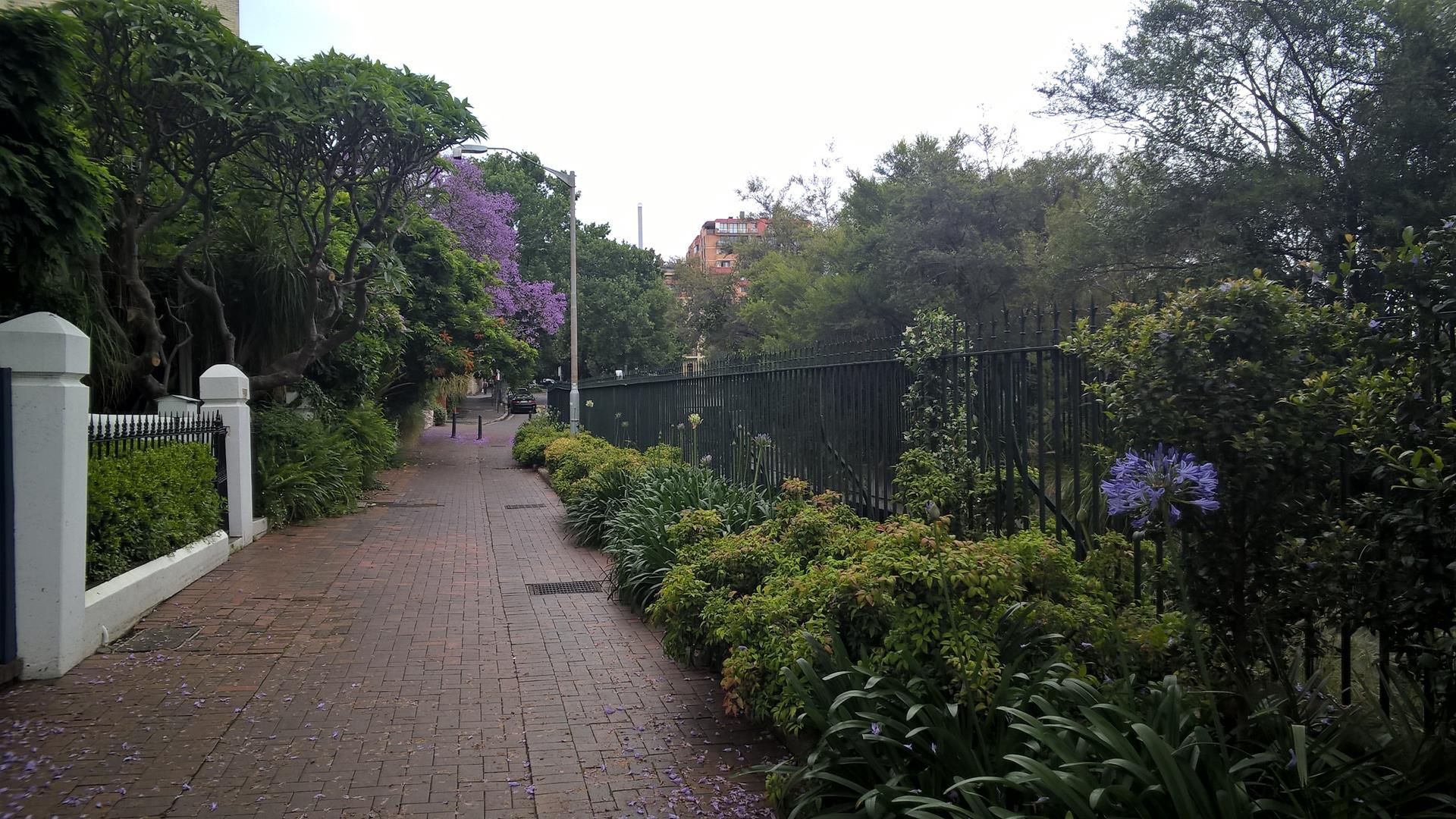 Straßenbild von Sydney