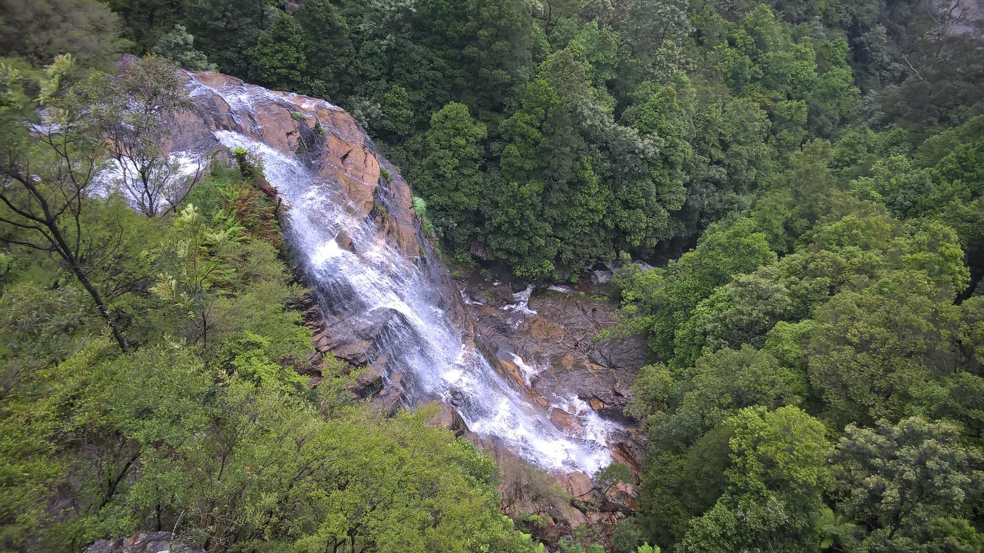 Der Wasserfall gehört noch zu den Leura Cascades