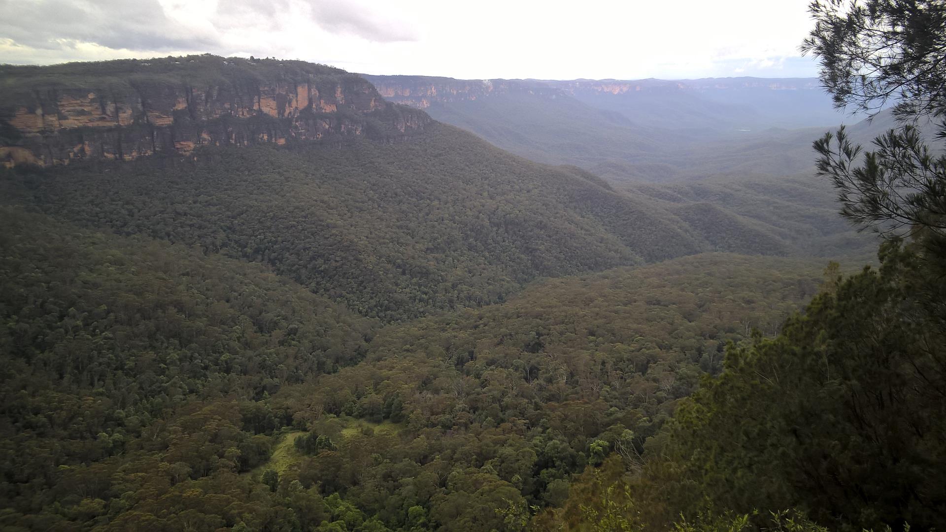 ... hatten wir immer wieder einen schönen Blick auf die Blue Mountains