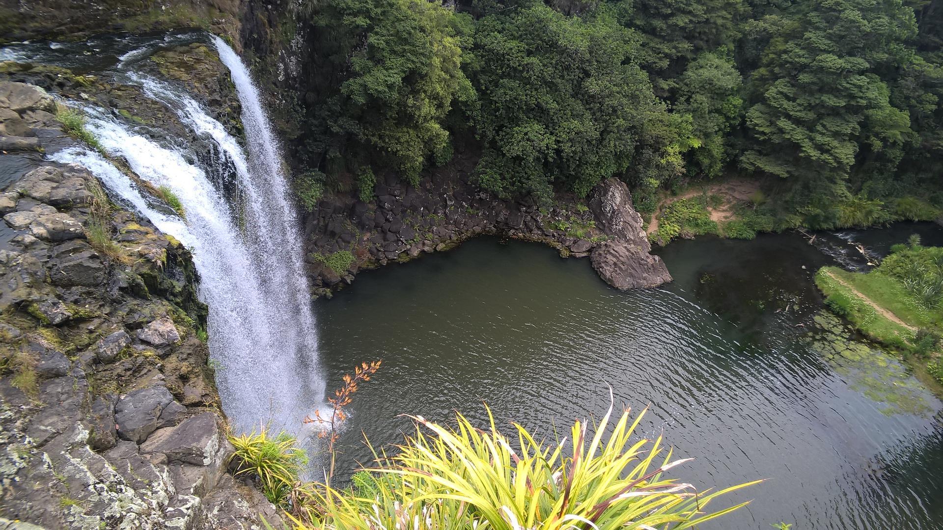 Kurzer Stop am Wasserfall von Whangarei
