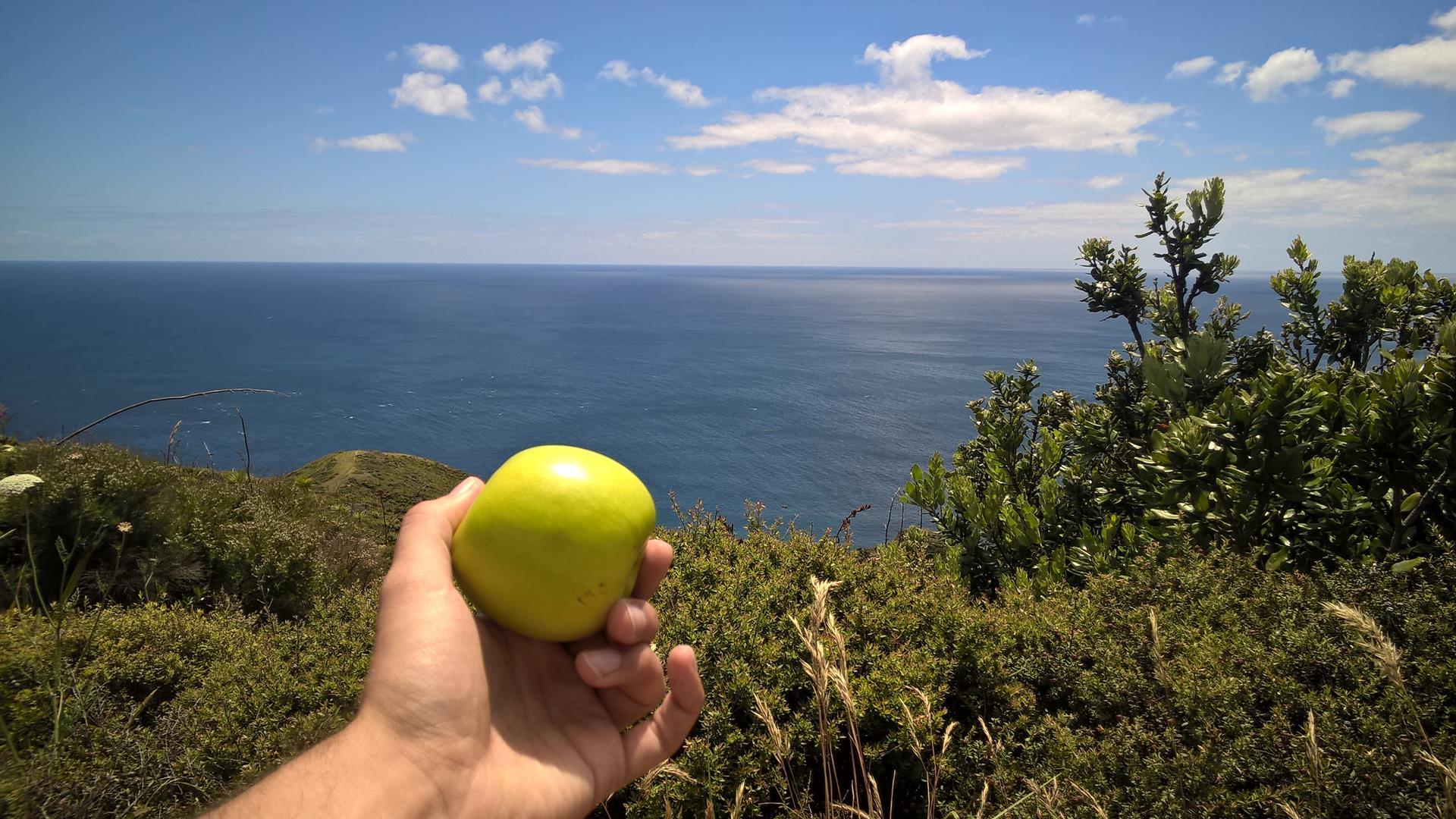 ... zur Mittagspause direkt über dem Meer
