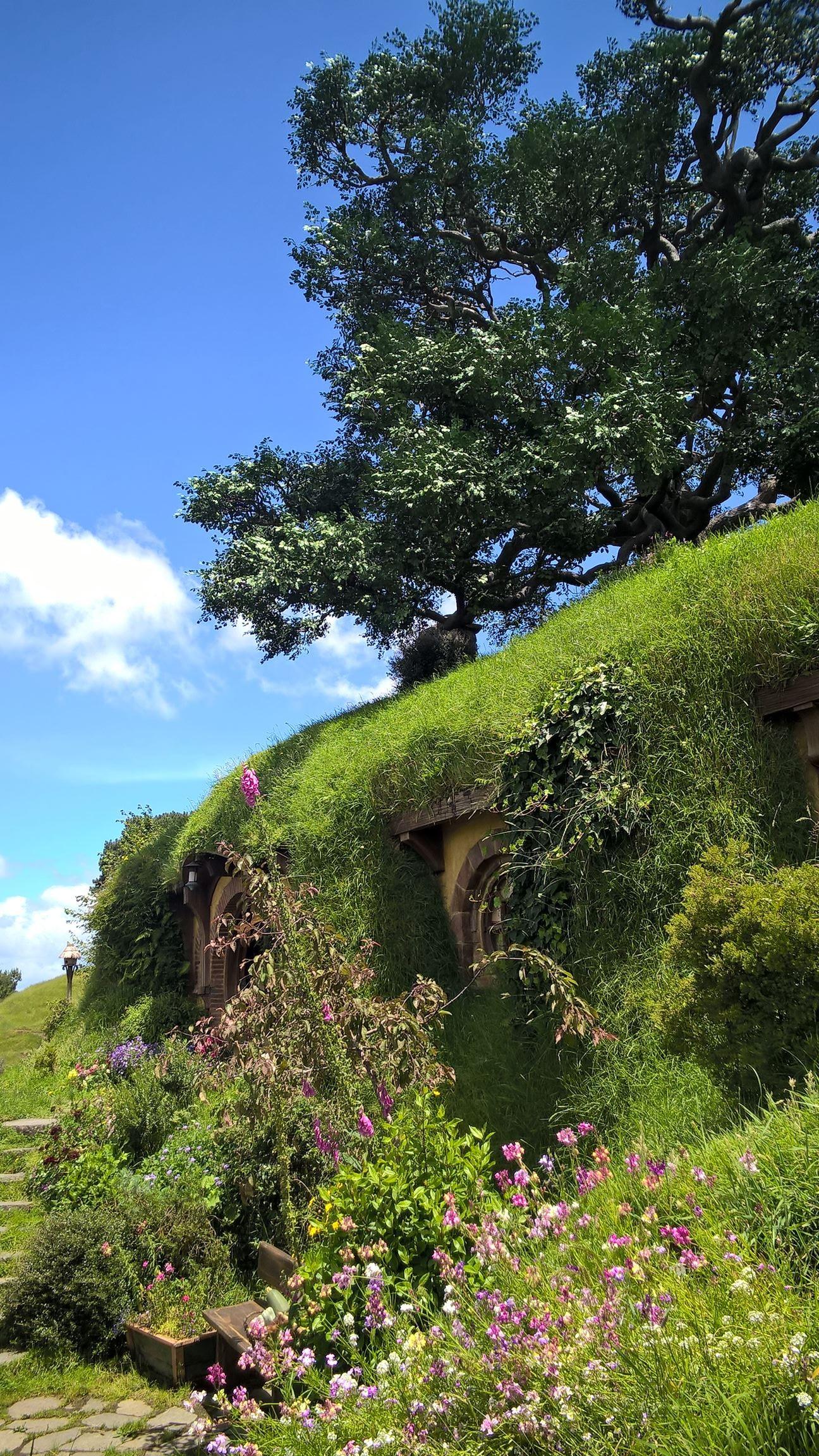 Die Höhle unter der Fake-Eiche: Der Baum ist vollkommen künstlich