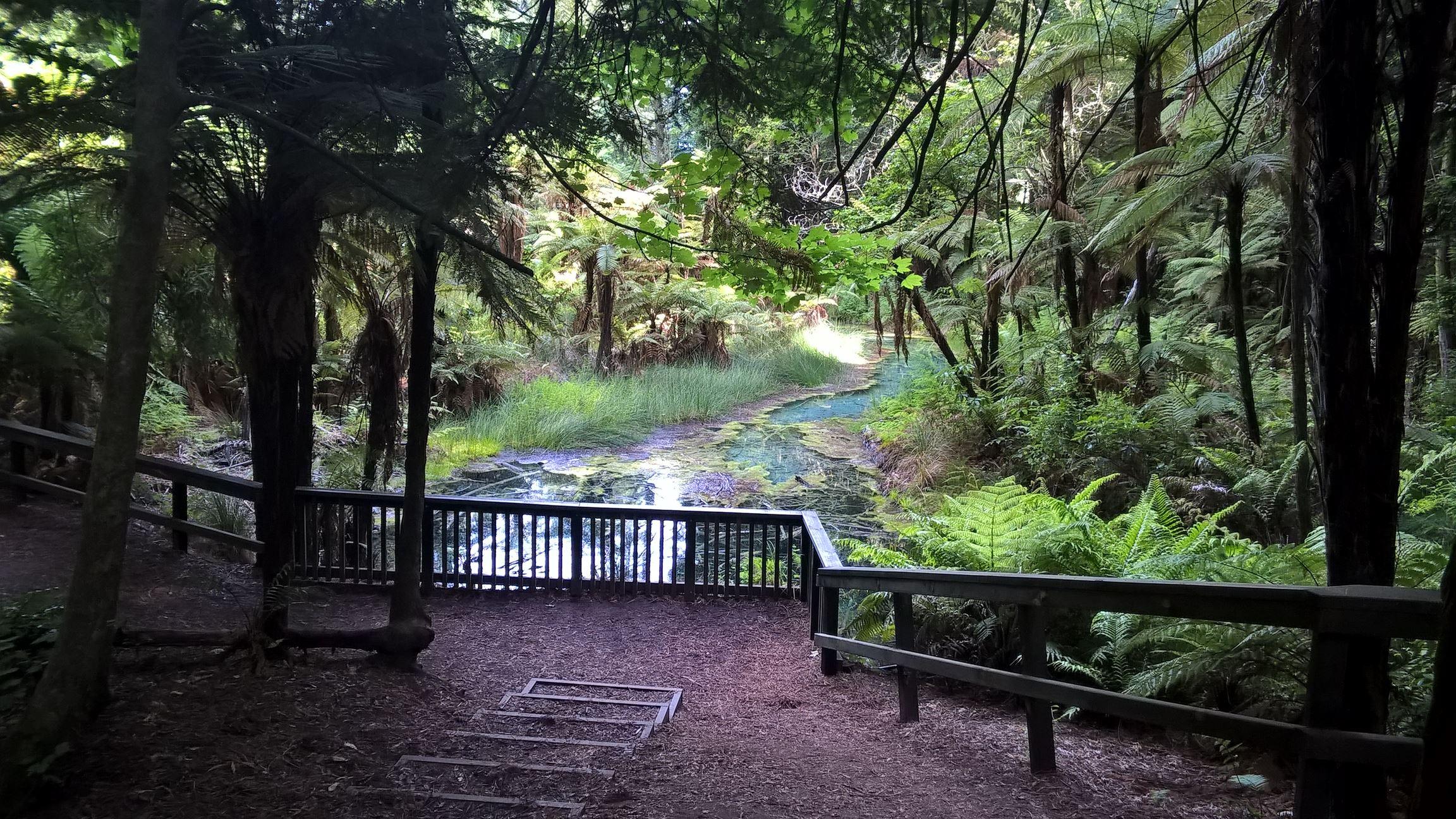 Ein weiterer schöner Spaziergang in der nähe von Rotorua