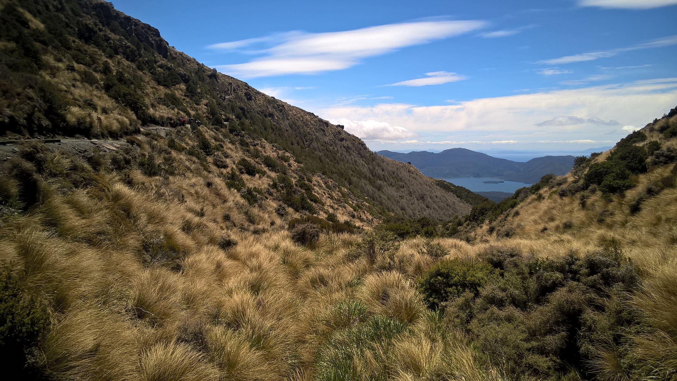 Da hinten ist Lake Taupo, da müssen wir heute noch hin (aber nicht zu Fuß)