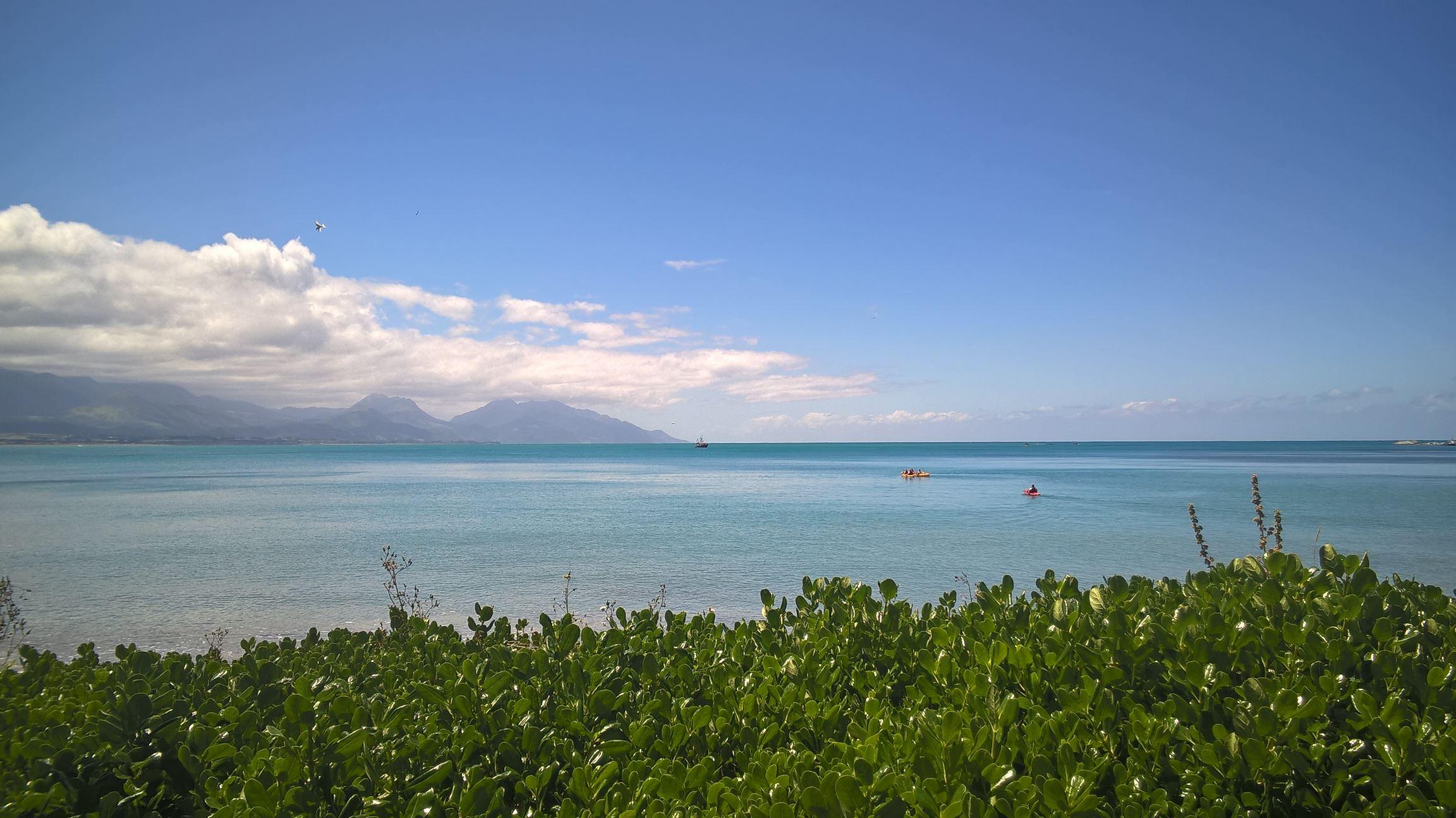 Das Meer bei Kaikoura ist einfach...